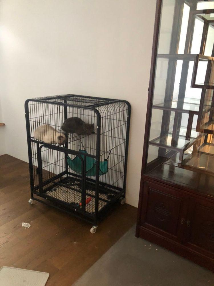 台北市內湖區士林區搬家案例.住家搬遷全豪華搬家方案4